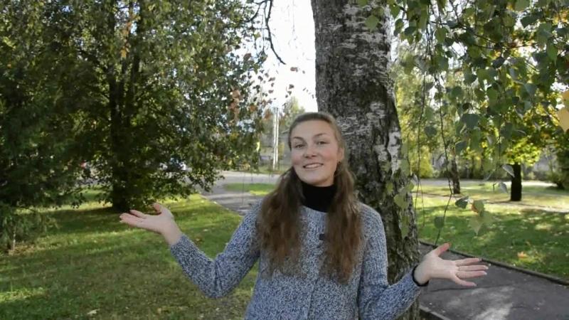 Любовь ролик Гнёздово районный конкурс Люблю свою профессию 2018