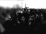 Slipknot The Hamels