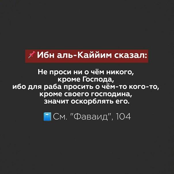 Фото №456243669 со страницы Амира Алханова