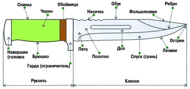 https://pp.vk.me/c543109/v543109340/191cc/WGmV02T7DGk.jpg