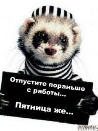 Игорь Колесников, 16 декабря , Краснодар, id178682836