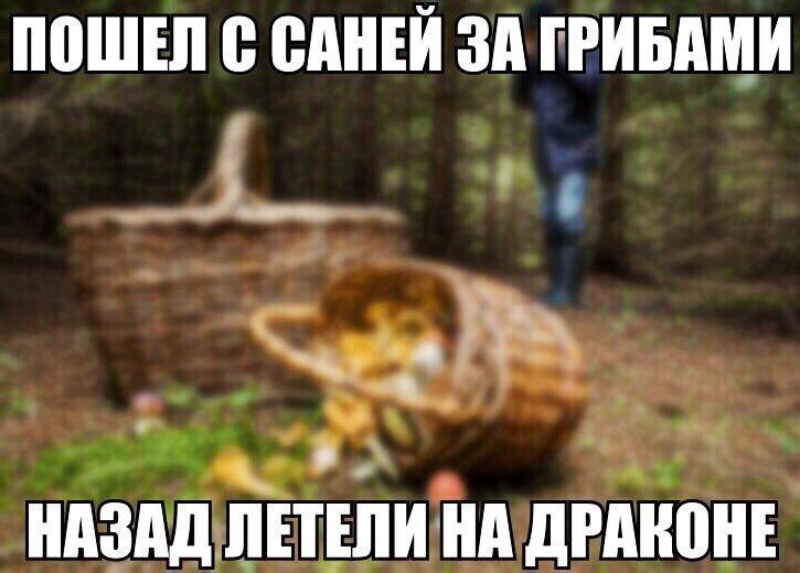 [Изображение: jNapZyWtE8s.jpg]