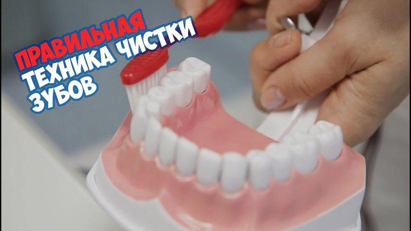 Правильная техника чистки зубов / Дент - Аурум / Dent - Aurum
