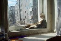 Иван Голованько, 27 августа 1996, Москва, id185464332