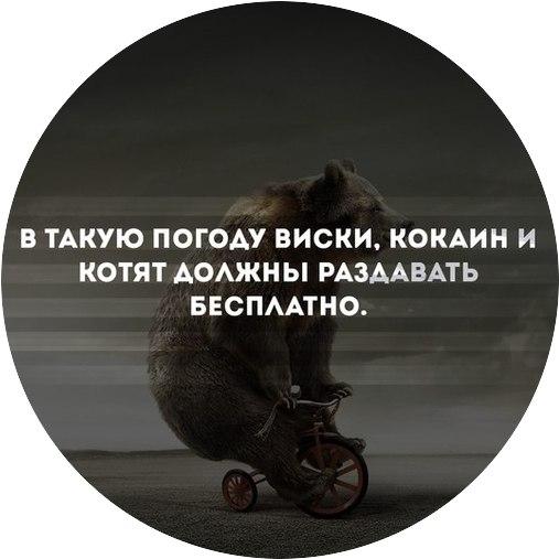 Владимир Пашкевич | Pointe-à-Pitre