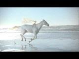 Вот это фантазия у парня. Citroen cabrio «Малыш». Еще больше крутых видео: http://vk.com/virus_tv Рекомендую!