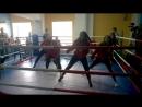 Выступление тренерского состава Магис Спорт PLAZA на соревнованиях по боксу