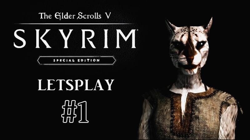 Прохождение TES V: Skyrim Special Edition 1 Хадвар шалунишка
