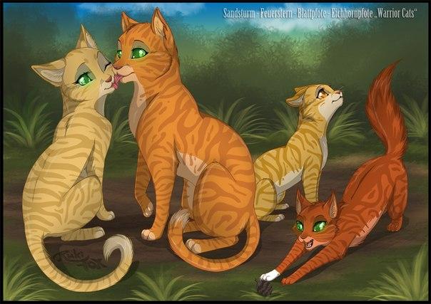 Коты воители история песчаной бури