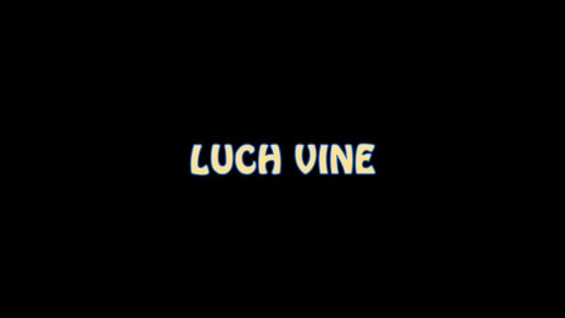 Дебютный гол Павленко luch vine