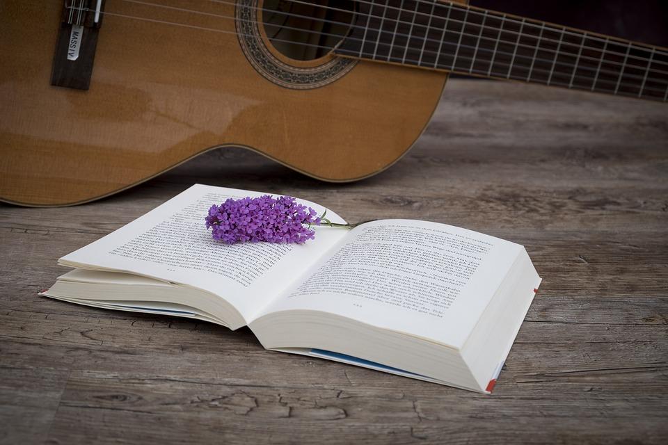 В библиотеке на границе Бибирева и Лианозова состоится встреча «Гитара по кругу»