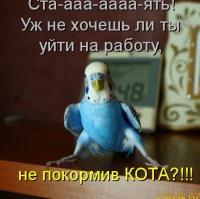 Тина Некрасова, 19 января , Николаев, id166818288
