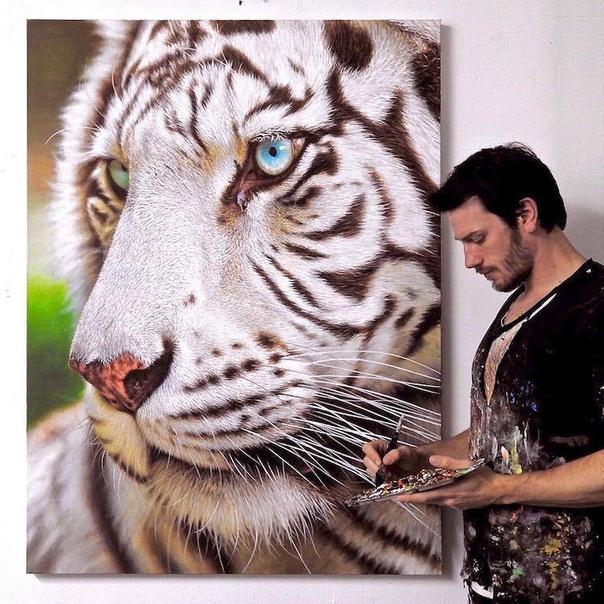 С самого детства канадский художник Ник Сайдер увлекался тиграми Сегодня он отдает дань уважение величественной огромной кошке и другим диким животным в своих невероятных гиперреалистичных