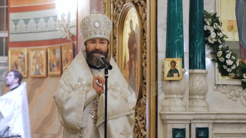 Рождественская проповедь епископа Россошанского и Острогожского Андрея_7 января 2019г.