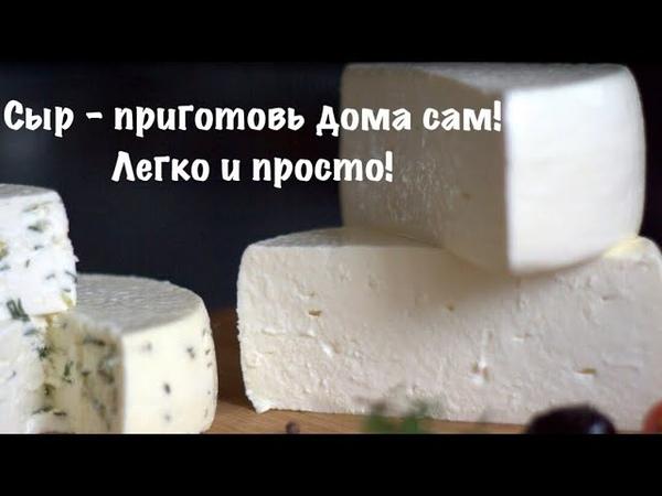 Как приготовить самый простой домашний сыр Сыр в Дегидраторе