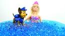 Мультик Барби куклы в бассейне. Видео для детей