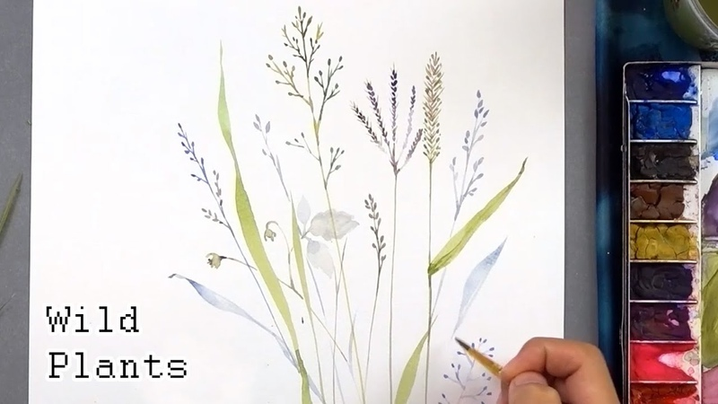[LVL3] Wild Plants Watercolor Painting - Botanical Illustration