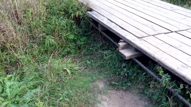 Кривский мост. Ходит ходуном, да)
