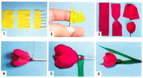 Как сделать крокусы из гофрированной бумаги с конфетами