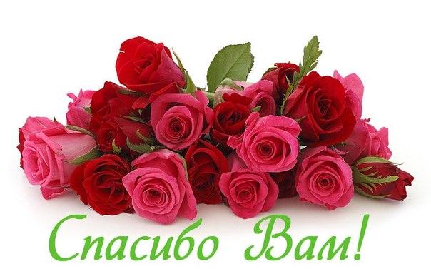 http://cs320430.vk.me/v320430509/77a2/5JzHm4hmzPE.jpg