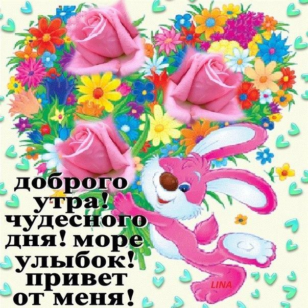 Открытки с пожеланием доброго утра и хорошего дня
