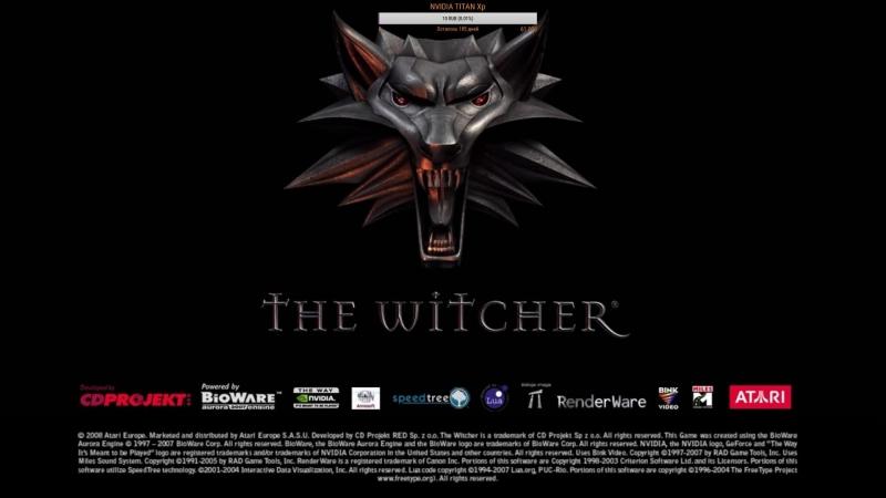 The Witcher Одиночная игра