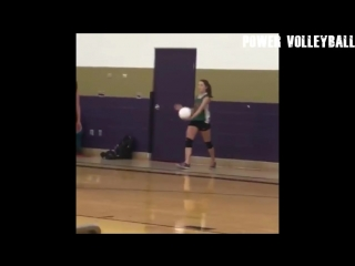 T-REX PLAY VOLLEYBALL ! Funny Volleyball Videos (HD)