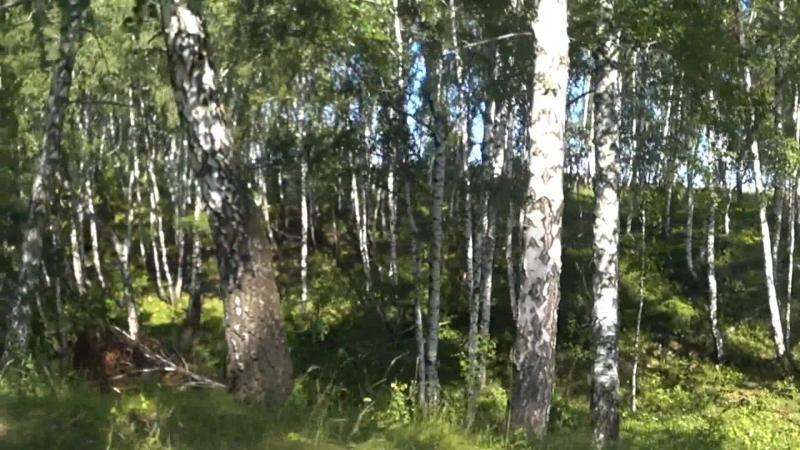 клип Фината Нурлыгаянова Норей авылы йыры