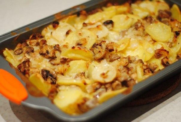 кулинария картофель с шампиньонами