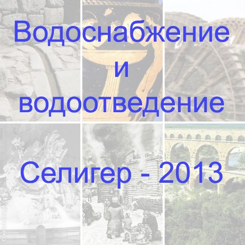 Р.Г. Мельниченко на форуме Селигер 2013