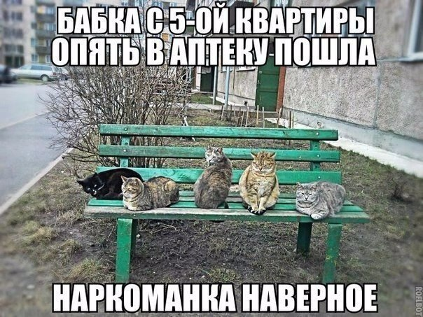 https://pp.vk.me/c635102/v635102344/1c0c45/JQwLwIxmI8I.jpg