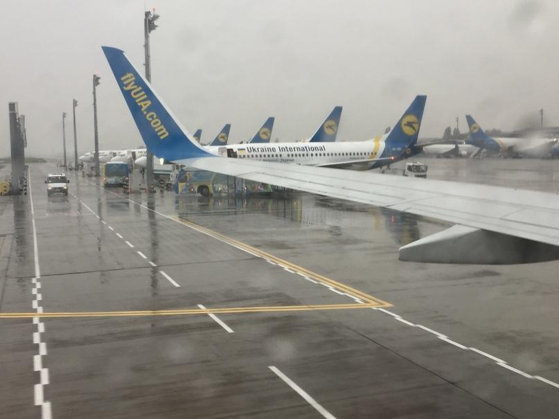 Не пустили в Украину. Аэропорт Борисполь (Киев)