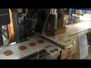 Chocolate Chip Cookie Slice Line UFM3100 Ultrasonic Food Cutting Machine