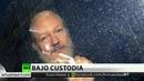 Defensa de Assange promete acudir al Tribunal Europeo de