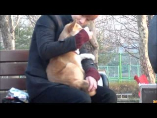 [FANCAM] 120117 Birth of a family ► Sunggyu & the dog