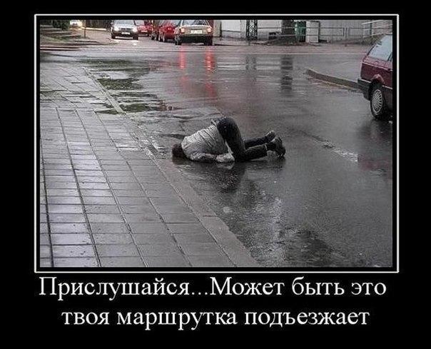 http://cs14101.vk.me/c7006/v7006776/ec45/4hLDEhDyz5w.jpg