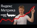 Установка Яндекс Метрики настройка целей для лендинга Vlog БМ