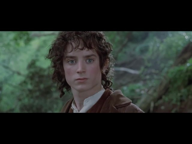 Lord Of The Rings coub