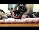 Update_ Badger, the Hot Mess Kitten