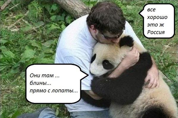 Яценюк поручил Яресько найти нового главу фискальной службы за две недели - Цензор.НЕТ 7741