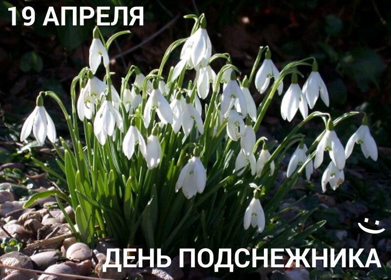 https://pp.userapi.com/c844320/v844320216/2dc4a/A3XGPYH1_k0.jpg