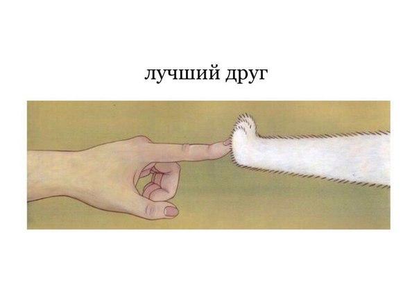 Фото №456259108 со страницы Нади Касиловой