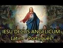 Jesu decus angelicum - LEGENDADO PT/BR