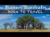 Baines Baobabs Botswana, Africa Aerial Mavic Pro Platinum Nxai Pan National Park