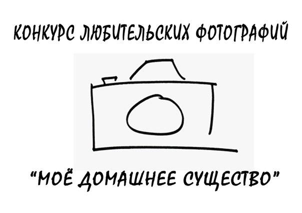 http://cs425529.vk.me/v425529526/aec/rV3wnzsgXkU.jpg