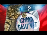 Кошка E1.RU Сяма уже знает, кто победит в матче сборных Франции и Перу