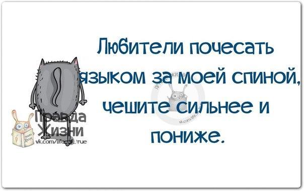 https://pp.vk.me/c543106/v543106123/1b779/j5e_-M8MzaQ.jpg