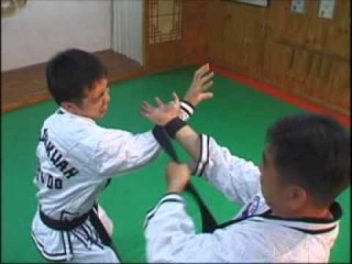 JJK Hapkido style demonstrate by Grand Master LEE Chang