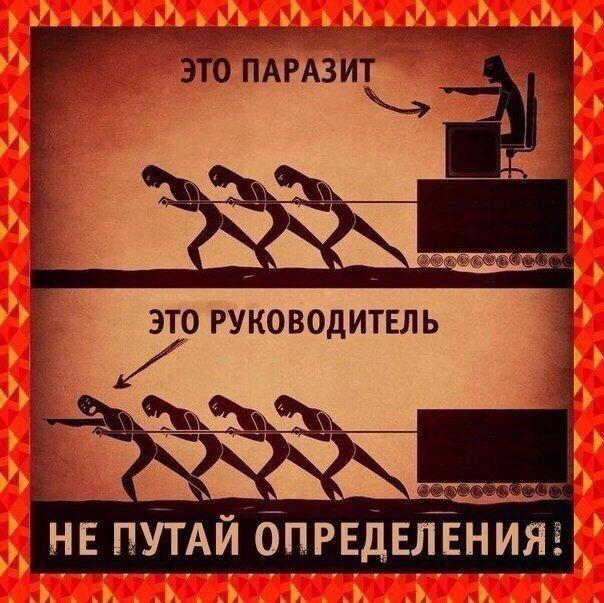Фото №456267311 со страницы Ильмира Резбаева