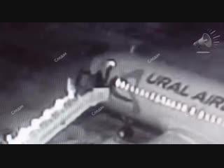 Падение пассажиров с трапа самолёта зафиксировали камеры аэропорта в Барнауле. ЧП произошло сегодня утром при посадке на рейс «